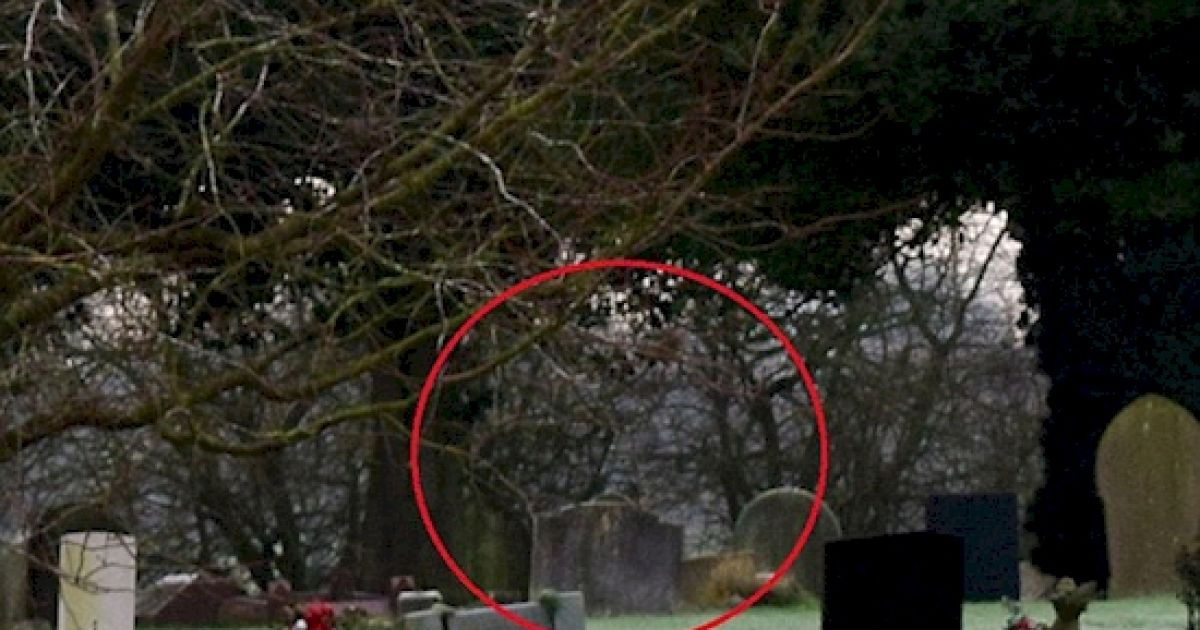 As Soon As He Saw The Pictures He Took, He Got Sick After He Saw THIS. Can You See It?