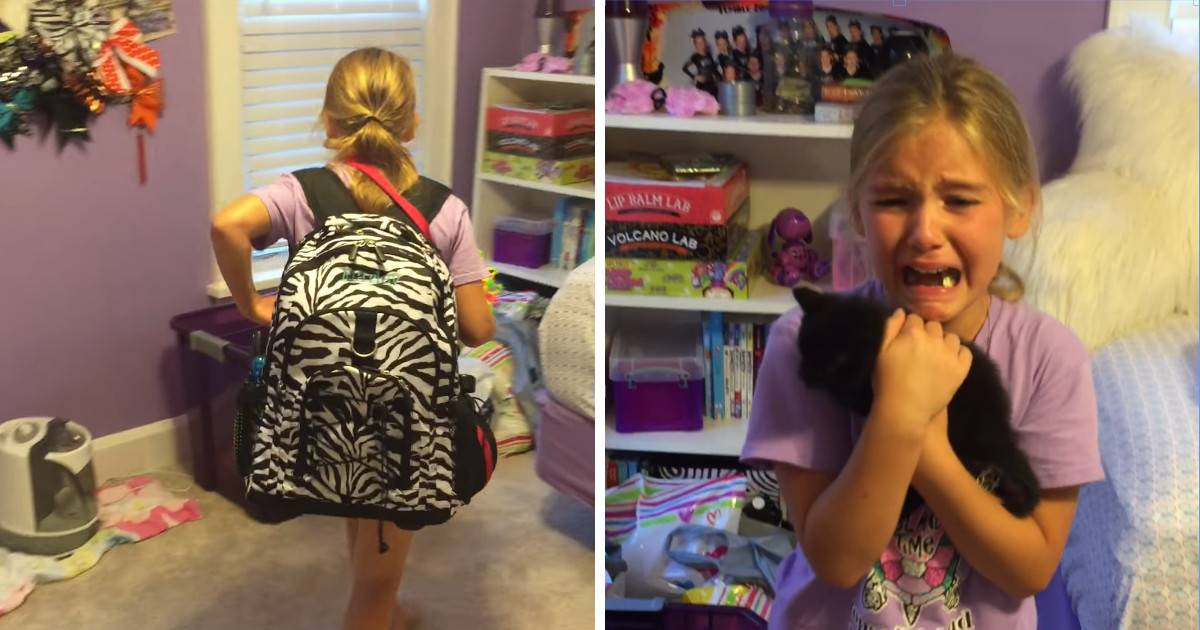 This Little Girl Gets A Surprise Kitten And Her Reaction Is Absolutely Adorable.