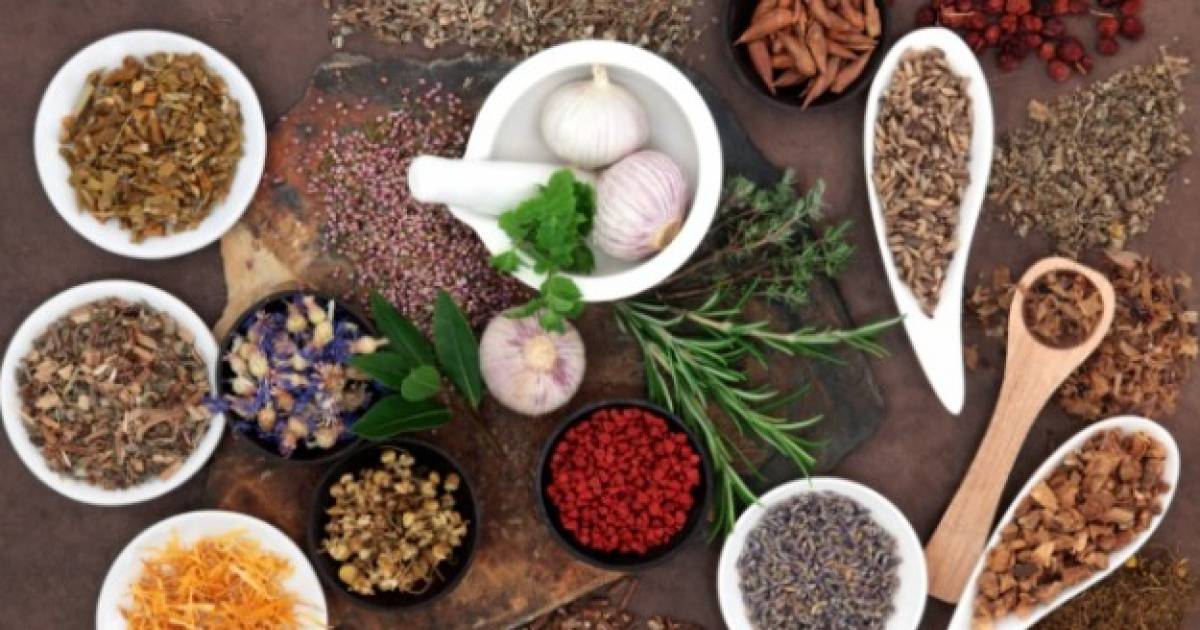 Herbal Remedies For Natural Pain Relief
