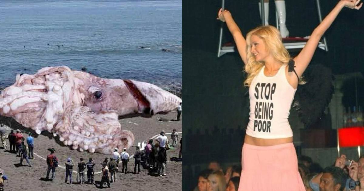 Unbelievable Viral Photos That Turned Out To Be Totally Fake.