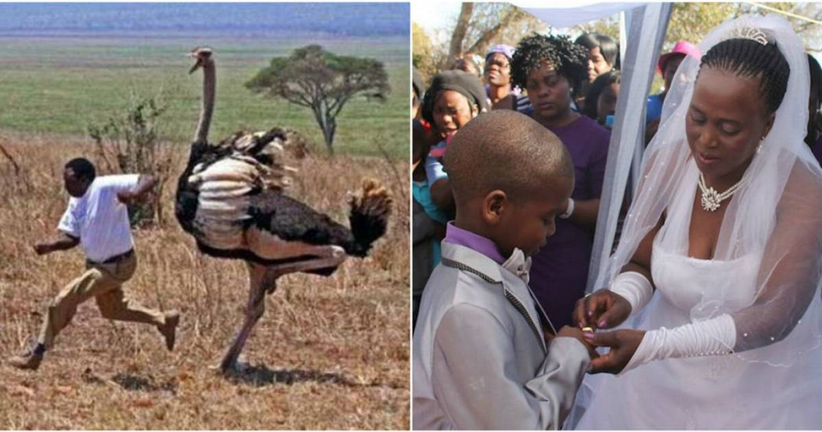 The Most Bizarre Laws In Africa