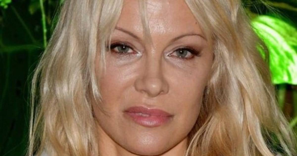 Pamela Anderson Victim Blames Harvey Weinsten Accusers