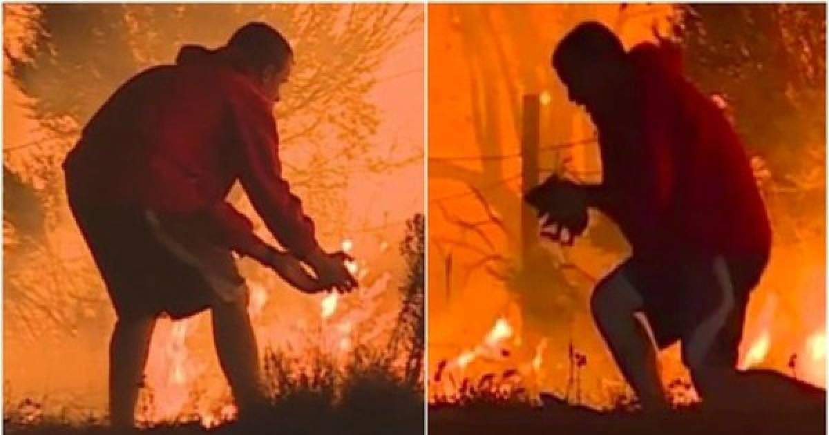 Photo Of A Man Risking His Life In California Wildfire To Save A Rabbit's Life Is Restoring Our Faith In Humanity.