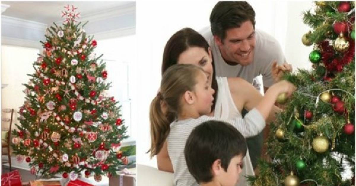 One Of Your Favorite Christmas Decorations Could Be Killing You