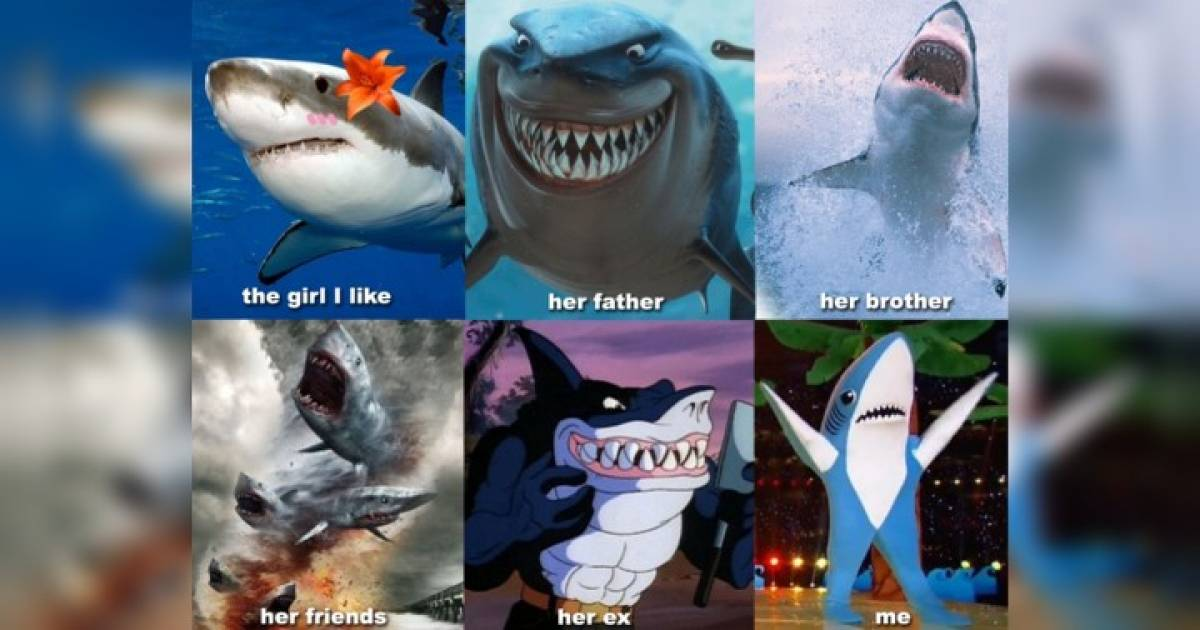 Shark Memes To Make You Feel Like It's Always Shark Week