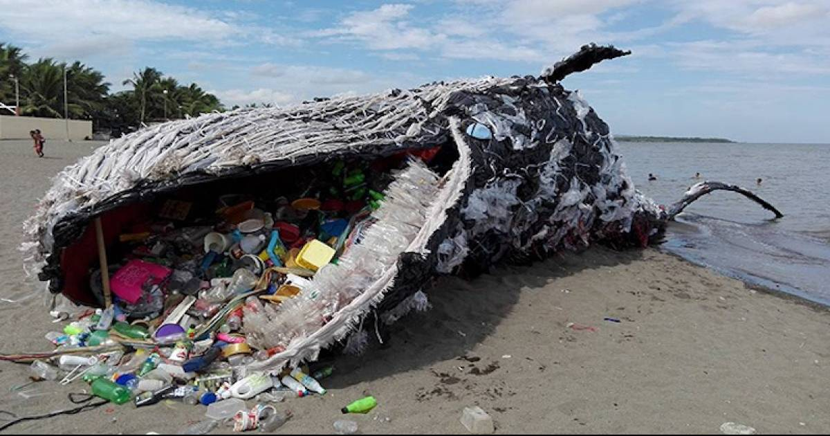 "Plastic Pollution Taking Its Toll, A Haunting ""Dead Whale"" Washes Up On The Sea Shore In Manila"