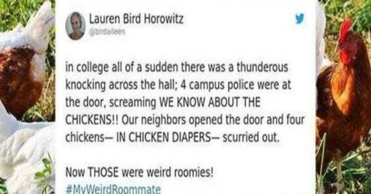 Twitter Users Use The Platform To Out Their Weird Roommates