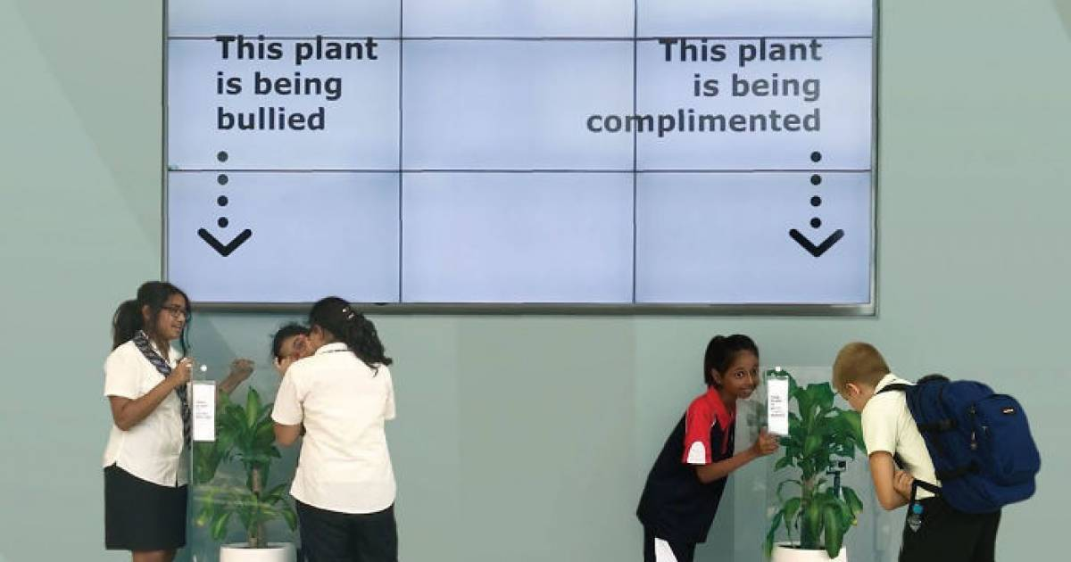 IKEA Asks People To Bully A Plant For 30 Days And Results Are Eyeopening