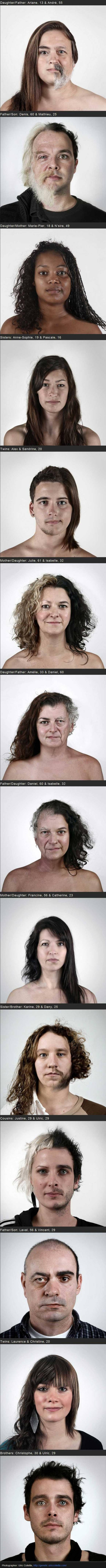 Genetics are awesome