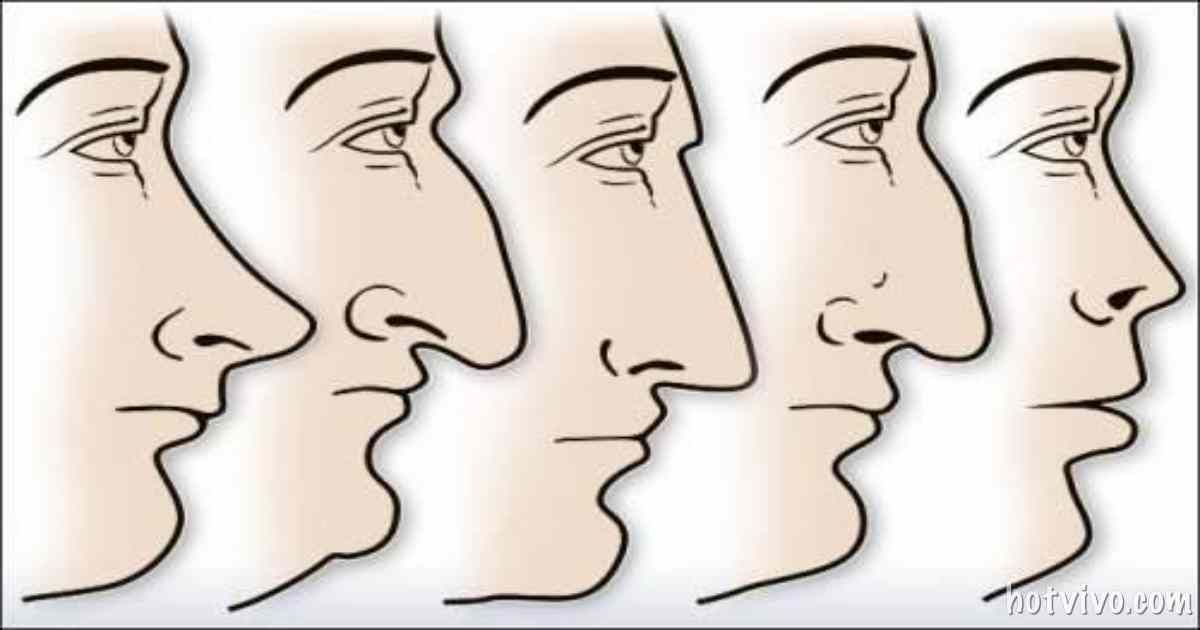 The Shape Of Your Nose Tells A Ton About Your Personality!