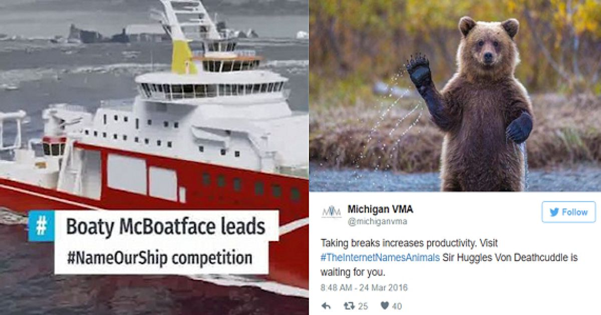 Boaty McBoatface Inspires The Internet To Rename Animals