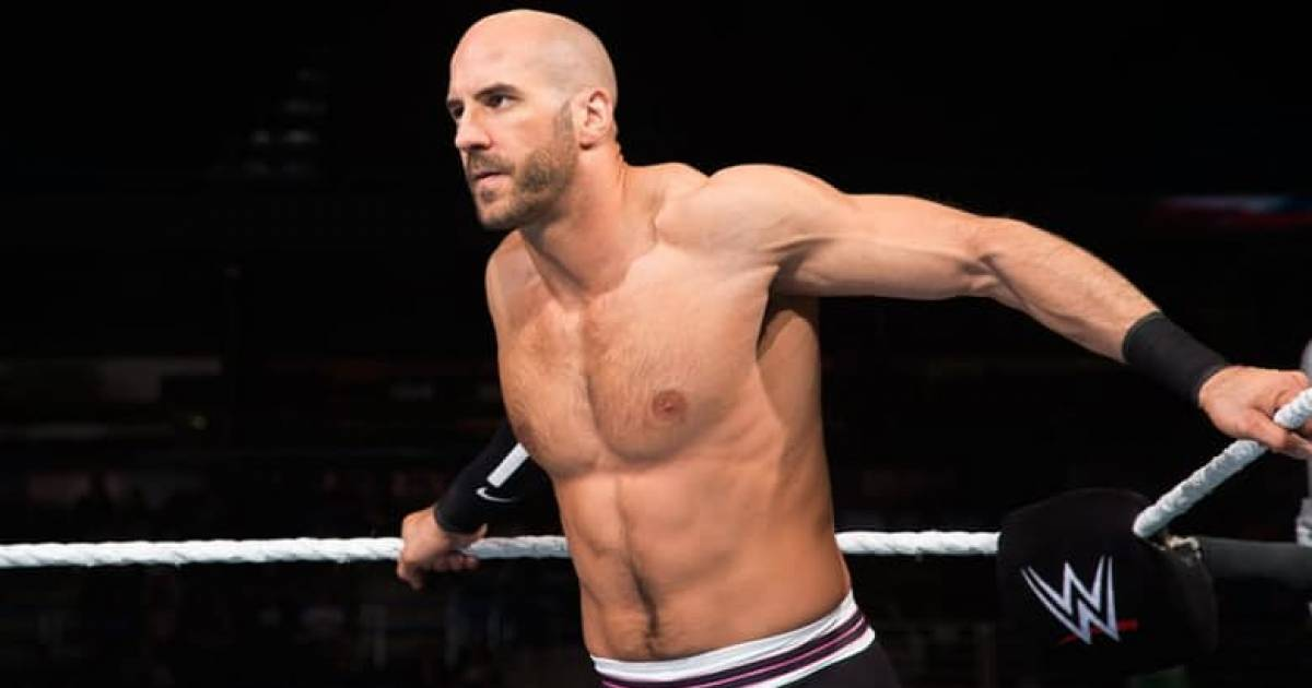 15 WWE Superstars Who Could Do Better In UFC Than CM Punk