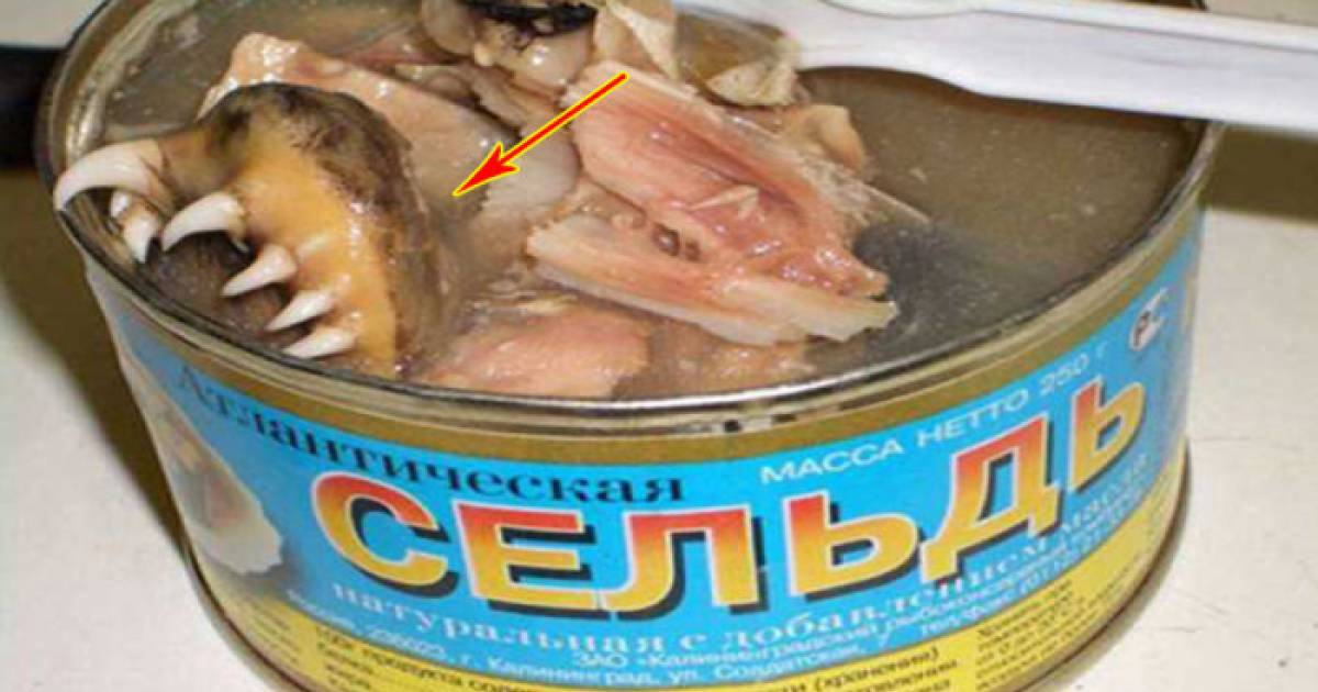 These Foods Look Really Disgusting, But Would You Dare Eat One For 10 Bucks?