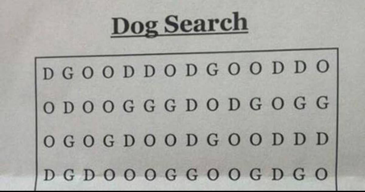 This Is Being Called The Hardest Wordsearch Ever