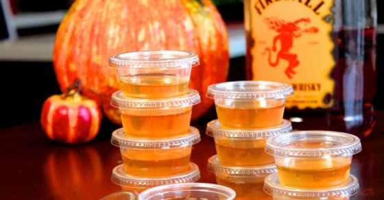 Apple Cider Jello Shots With Fireball Whisky Just In Time For Halloween