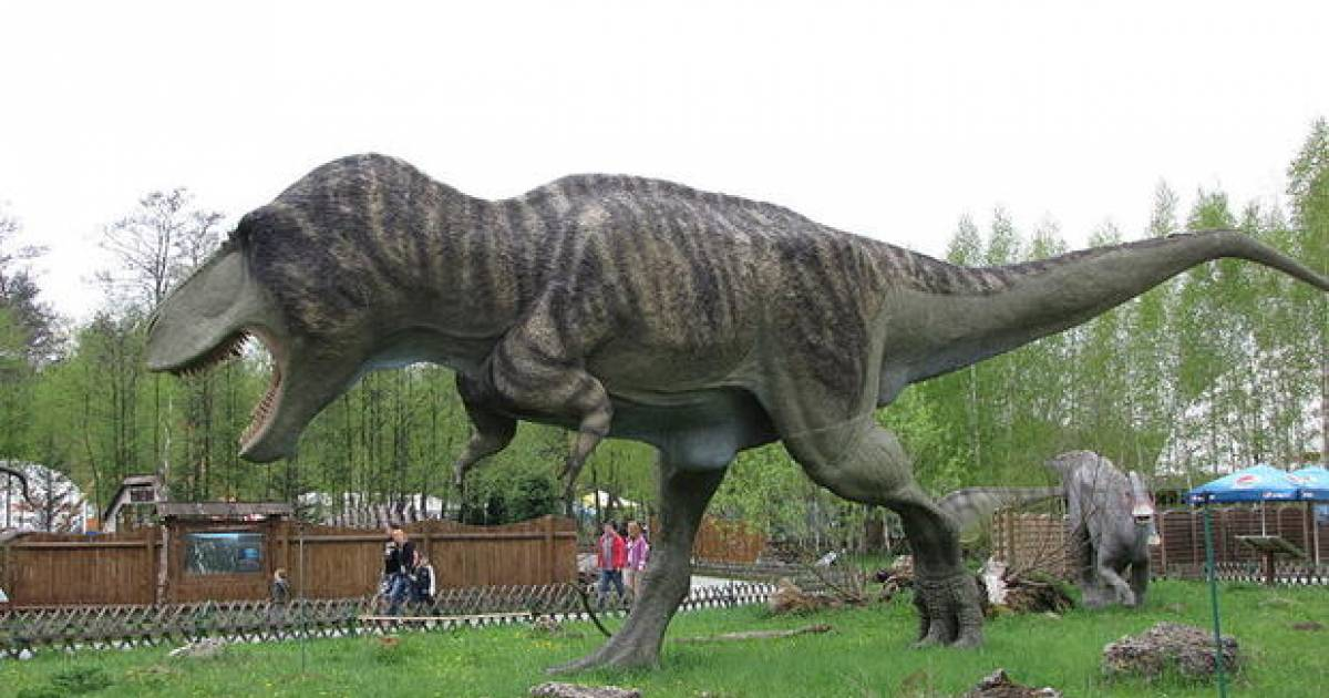 Paleontologists Reveal The Real Reason T-Rex Had Such Short Arms