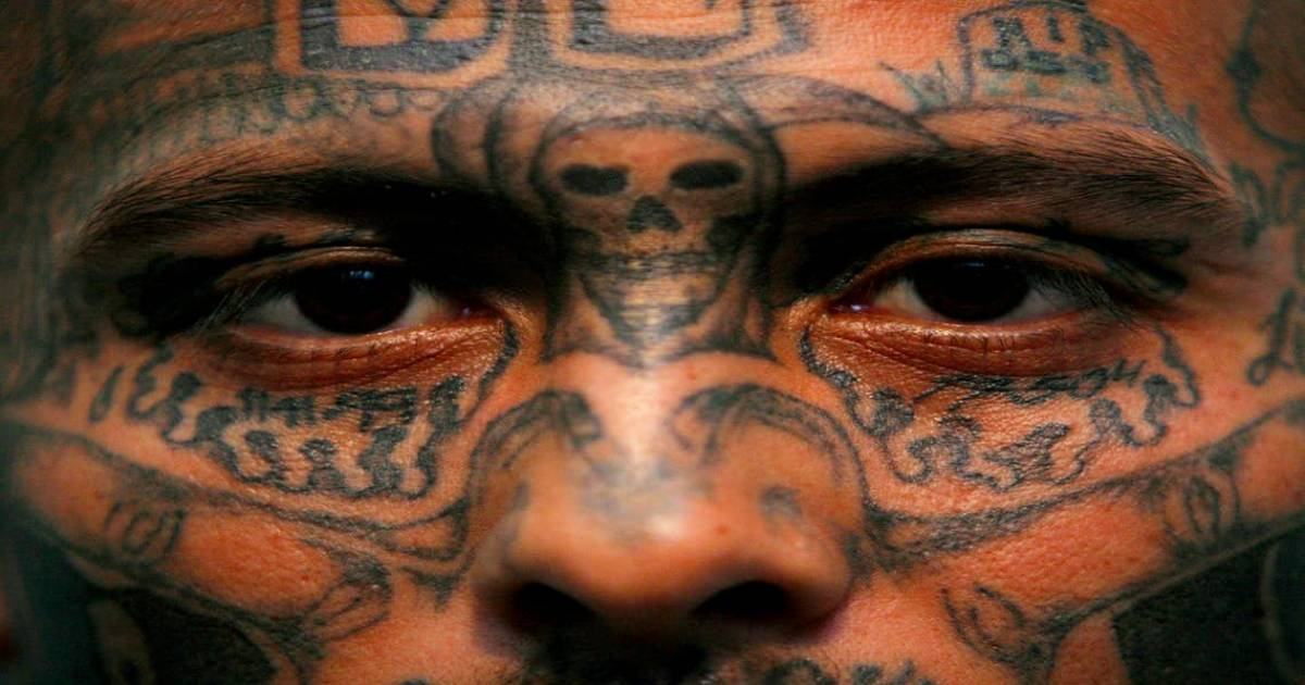 The 5 Countries With The Largest Gang Infestations In The World.