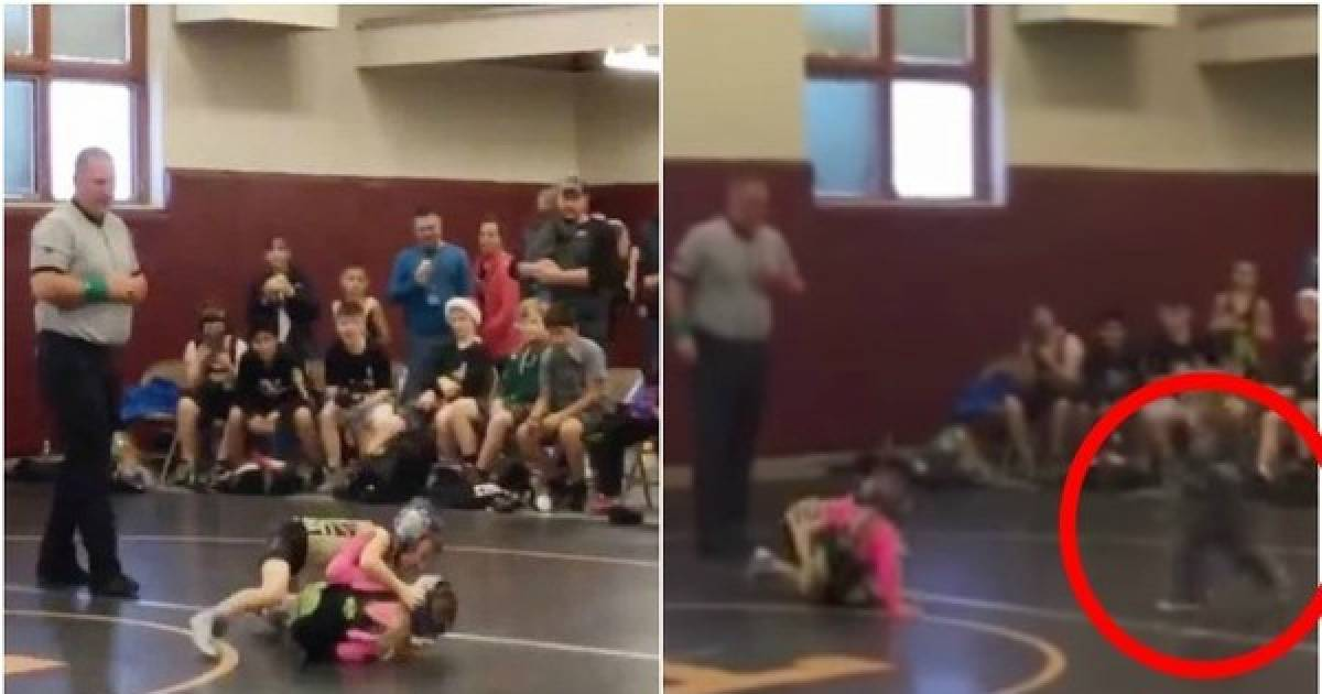 Toddler Runs To Save His Sister During A Wrestling Match Thinking That It Is A Real Fight