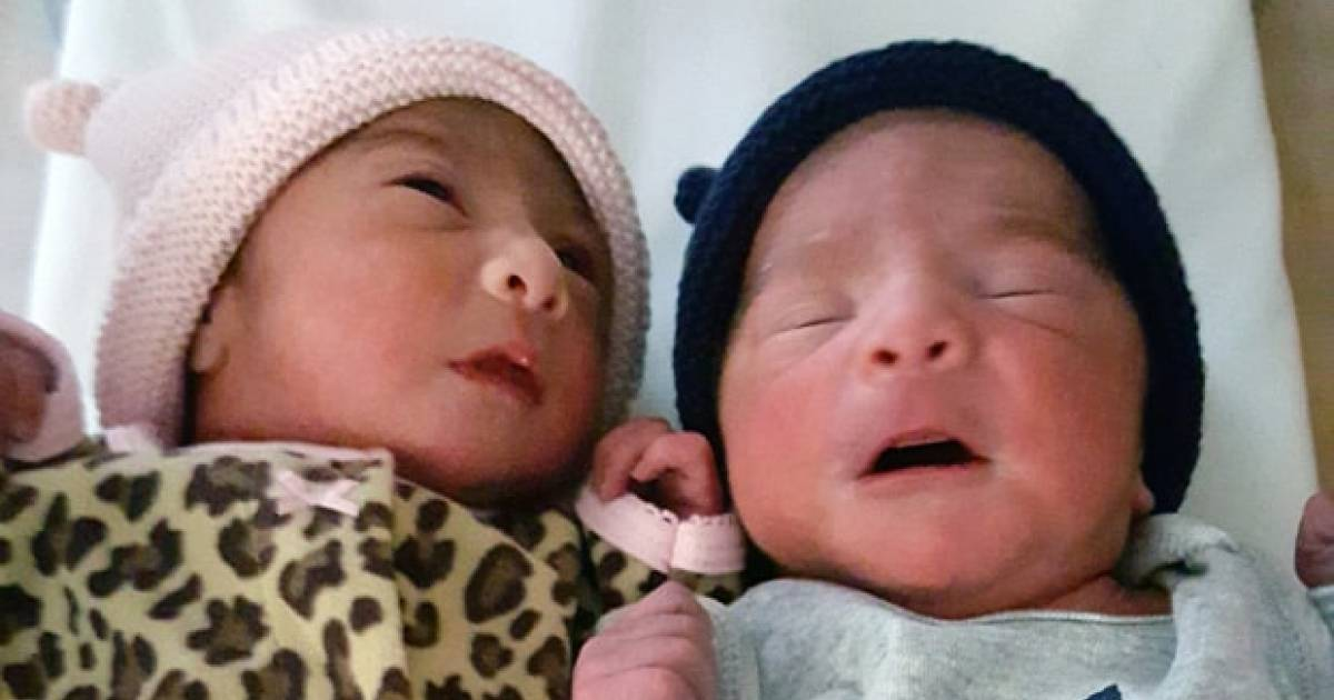 California Mom Gives Birth To Twins In Different Years