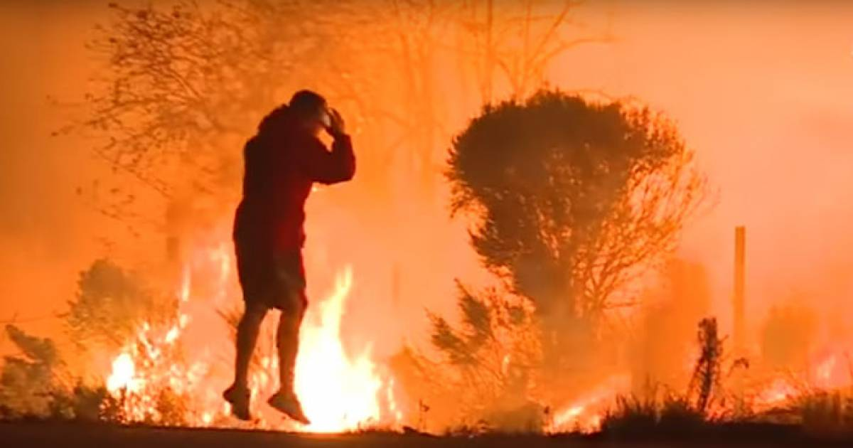 This Anonymous Hero Saving A Bunny From Wildfire Will Restore Your Faith In Humanity