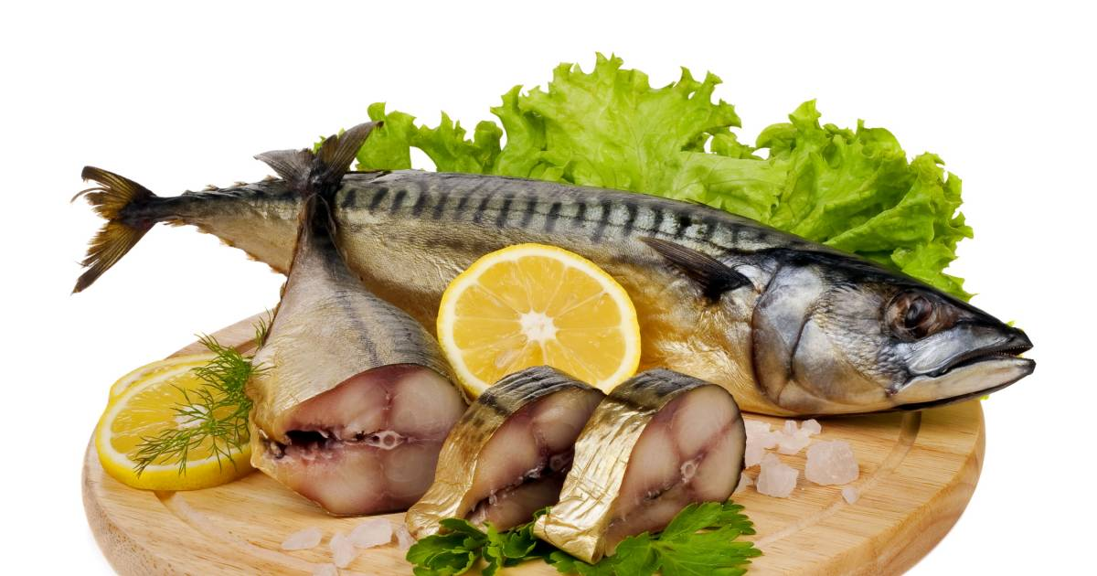9 Types Of Fish You Should Never Consider Eating Here Is Why