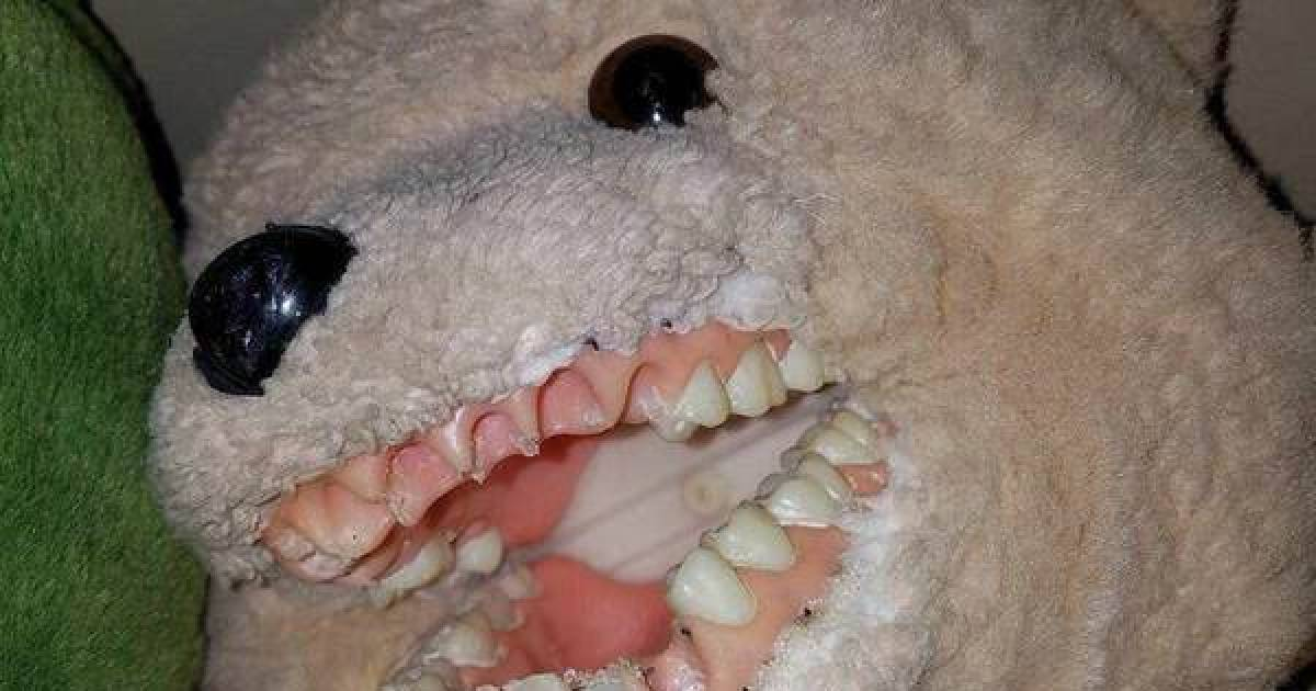 Cursed Images That Will Cause Nightmares Vaplicious