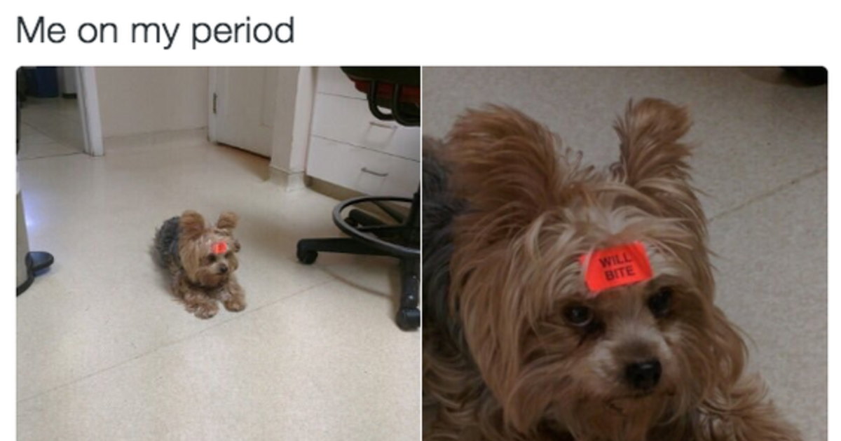 Every Woman Ever Alive Can Relate To These Period Memes