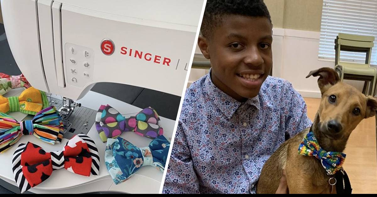 Teenager Makes Adorable Bow Ties For Shelter Animals In An Effort To Help Them Get Adopted
