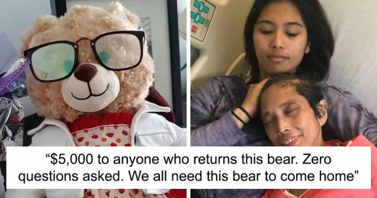 This Woman's Teddy Bear That Had Her Late Mother's Voice Recording Was Stolen By Thieves, Ryan Reynolds And Many Others Help Finding The Lost Item