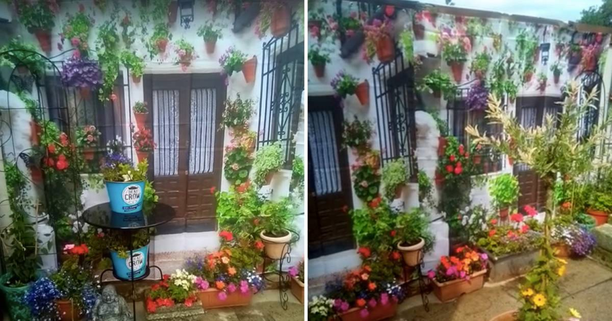 For A Perfect Optical Illusion, This Woman Fakes a More Exotic Garden With £10 Shower Curtain