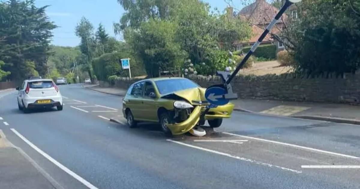 Driver Crashes Into A Road Sign After Spotting Spider In The Car