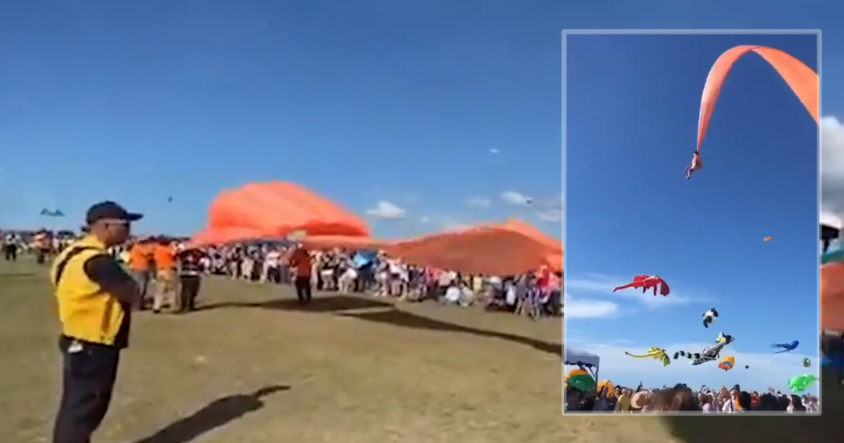 Heart-Stopping Videos Shows 3-Year-Old Girl Is Lifted More Than 100ft Into The Air By A Giant Kite