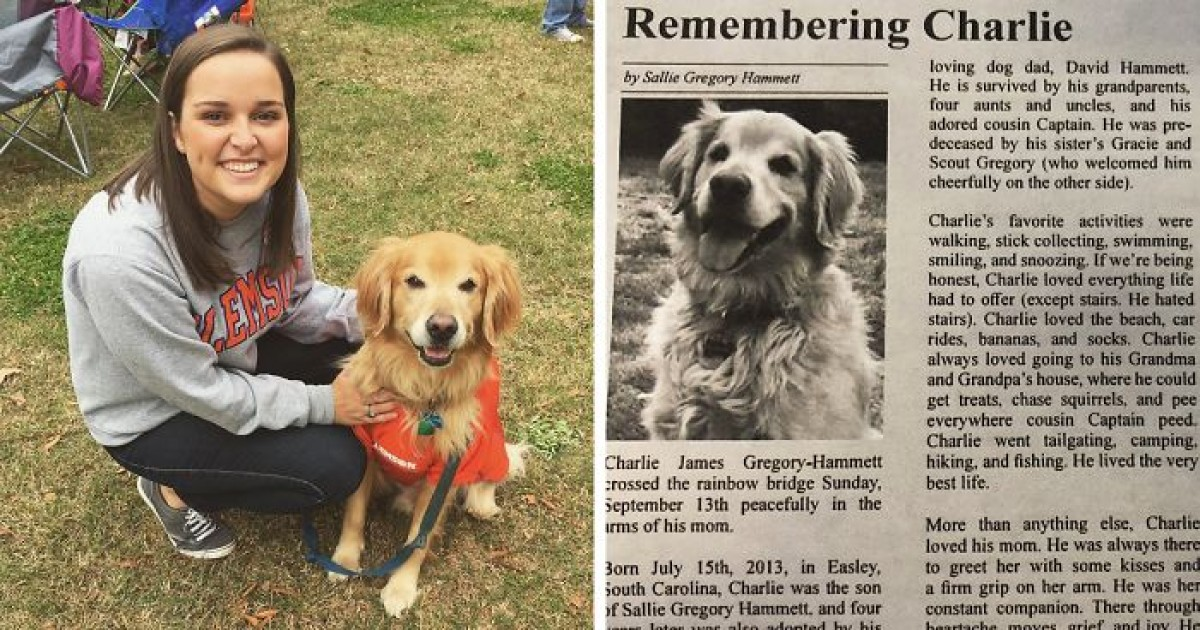 Woman's Emotional Obituary For Her Beloved Dog Touches The Heart Of Many, Leaves Many In Tears
