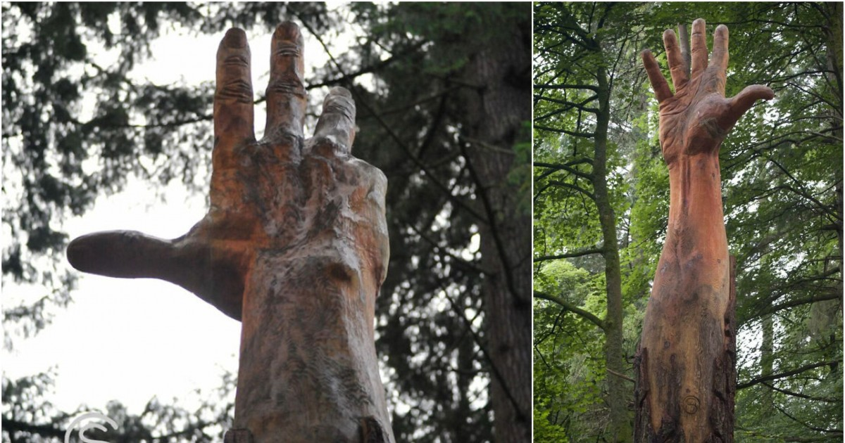 Environmental Artist Transforms Storm-Damaged Tree In Wales Into A Striking 50 Ft Hand Worth $16,000