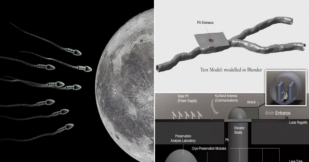Scientists Want To Build A Sperm Bank And Send 6.7 Million Sperm Samples To The Moon