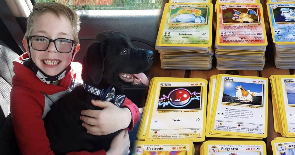 Pokémon Sends Rare Cards To Boy Who Sold His Prized Cards To Save His Sick Dog's Life