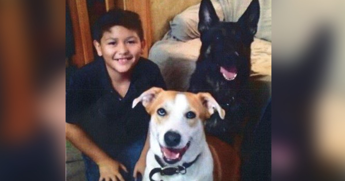 Heartbreaking: 12-year Old Boy Abused By His Parents, Shocked With Dog Collar And Starved Until He Ate His Own Hair