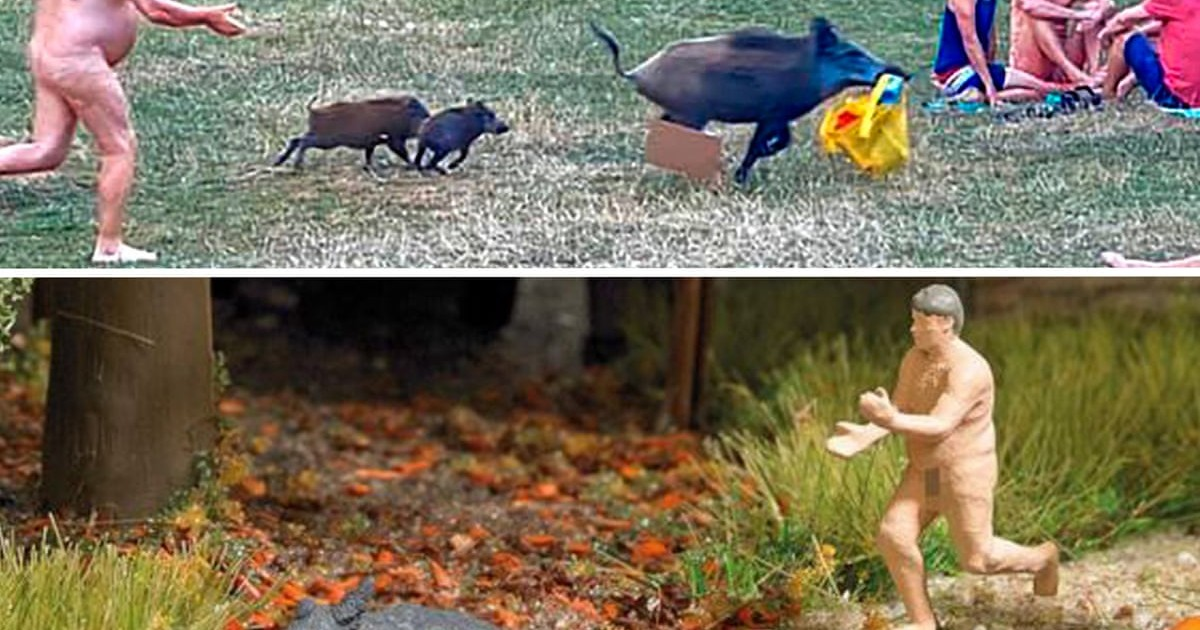 Hey, that's mine: naked man's wild boar chase immortalised in plastic