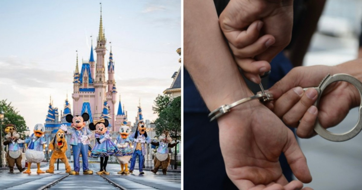 Disney World Employees And Nurse Among 17 Suspects Arrested In Child Predator Sting