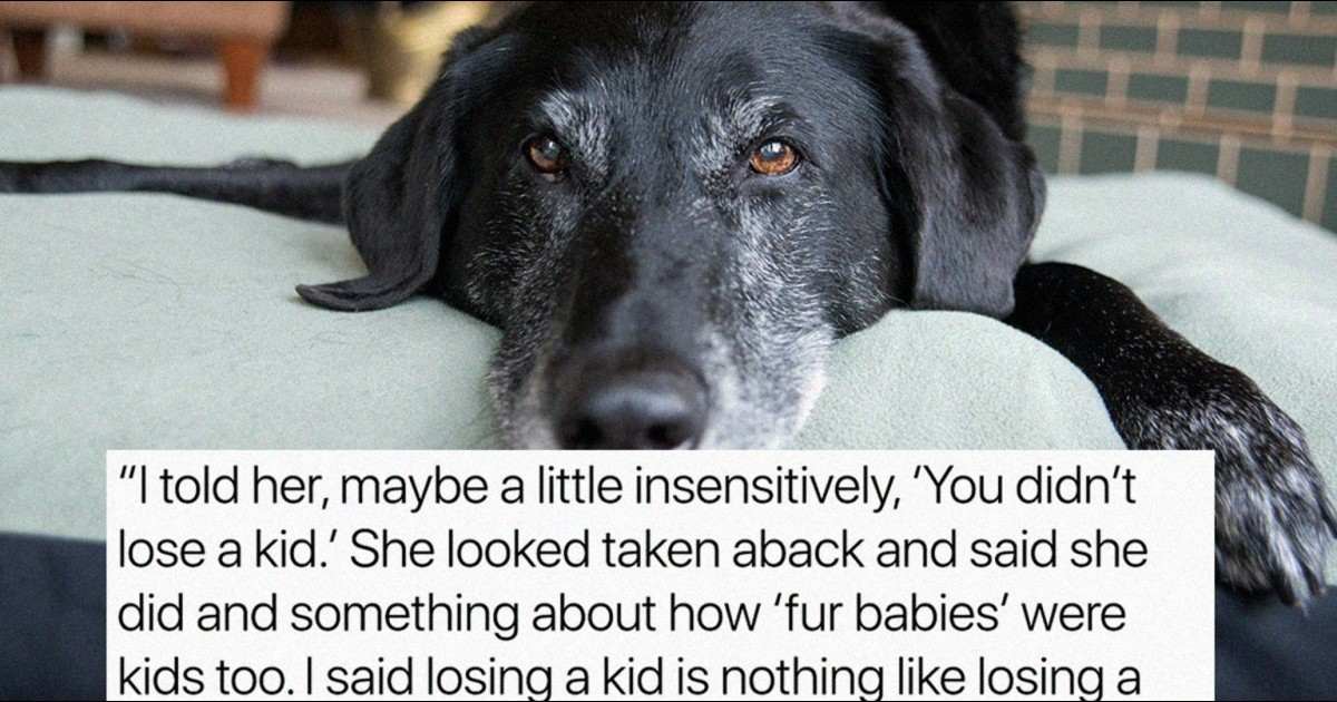 Man Shocked When Friend Compares Her Dead Dog To His Dead Son