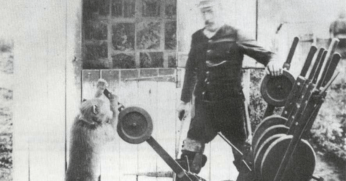 Meet Jack 'The Baboon' Who Successfully Worked For The Railway As Signalman For 9 Years And Never Once Made A Mistake