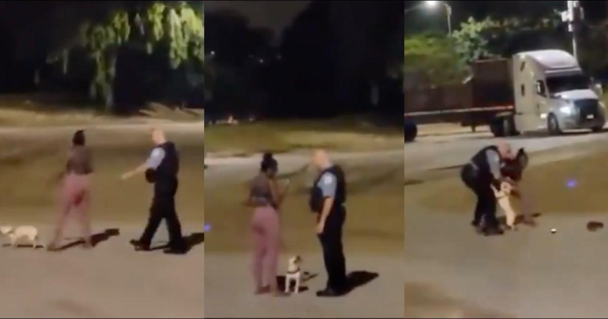 Allegedly Racist Police Officer Violently Grabs Black Woman Walking Her Dog